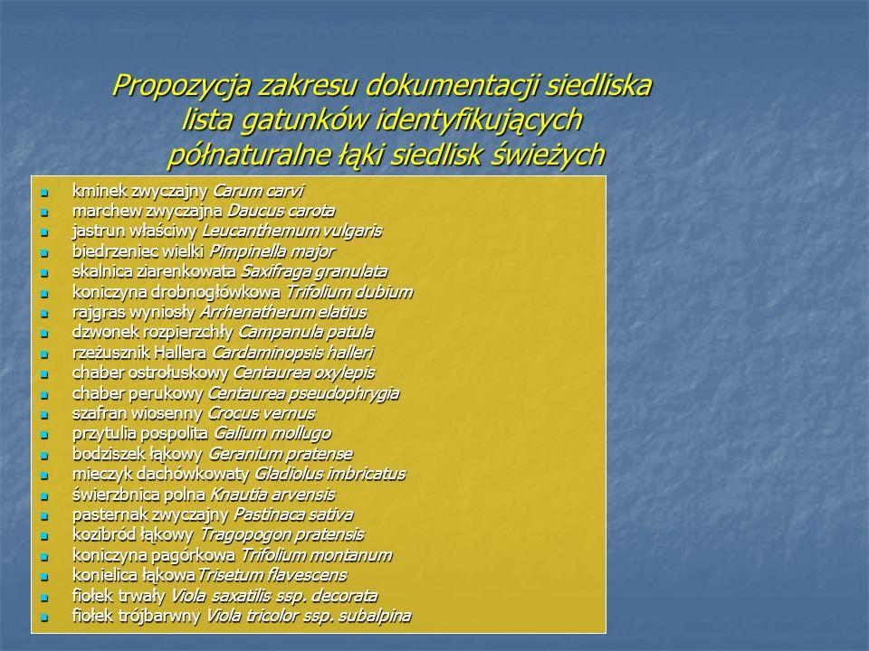 Propozycja zakresu dokumentacji siedliska lista gatunków identyfikujących półnaturalne łąki siedlisk świeżych kminek zwyczajny Carum carvi kminek zwyc