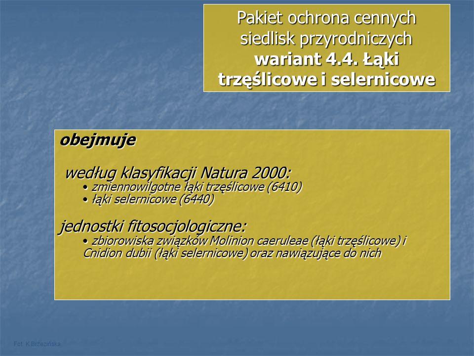 Pakiet ochrona cennych siedlisk przyrodniczych wariant 4.4. Łąki trzęślicowe i selernicowe Fot. K.Brzezińska obejmuje według klasyfikacji Natura 2000: