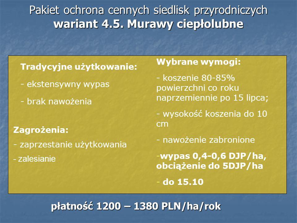 Pakiet ochrona cennych siedlisk przyrodniczych wariant 4.5. Murawy ciepłolubne Tradycyjne użytkowanie: - ekstensywny wypas - brak nawożenia Zagrożenia