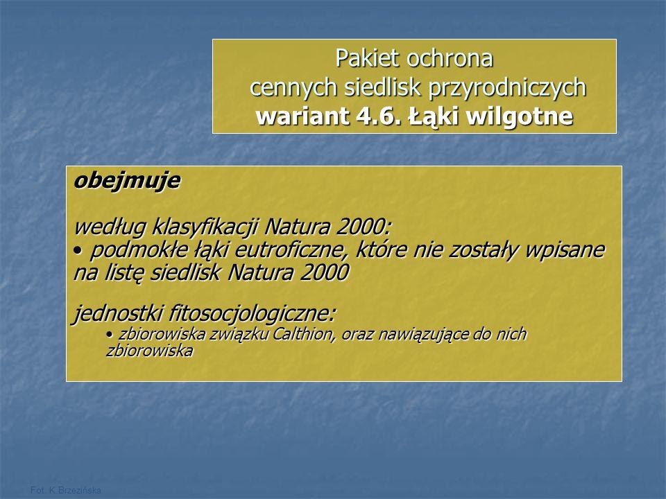 Fot. K.Brzezińska Pakiet ochrona cennych siedlisk przyrodniczych wariant 4.6. Łąki wilgotne obejmuje według klasyfikacji Natura 2000: podmokłe łąki eu