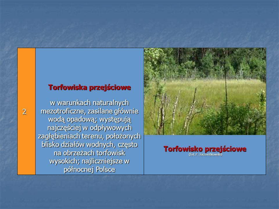 2 Torfowiska przejściowe w warunkach naturalnych mezotroficzne, zasilane głównie wodą opadową; występują najczęściej w odpływowych zagłębieniach teren