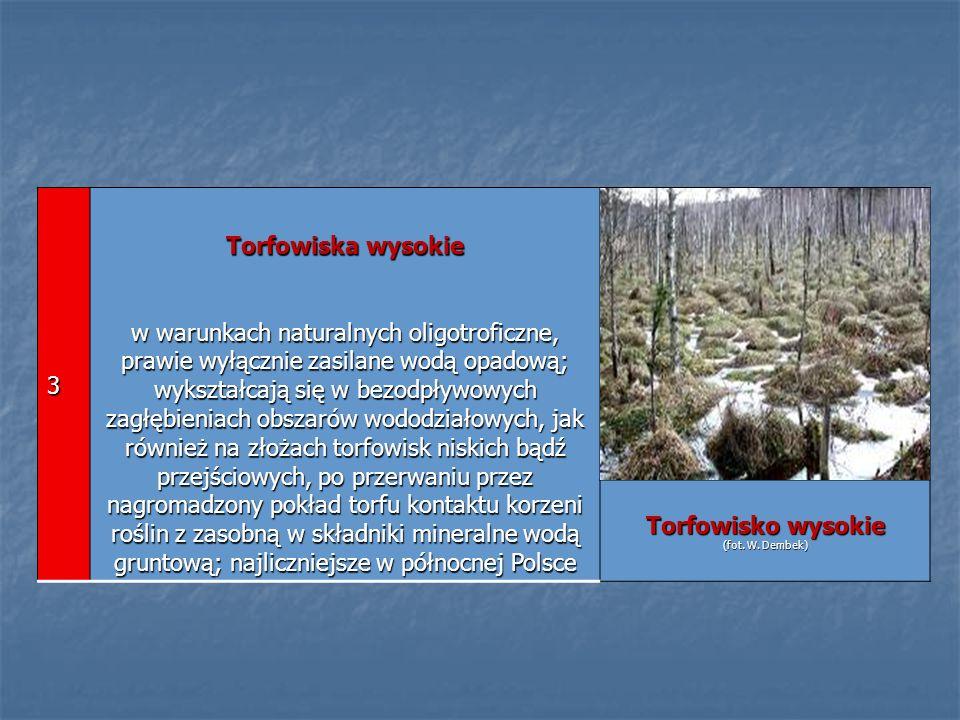 3 Torfowiska wysokie w warunkach naturalnych oligotroficzne, prawie wyłącznie zasilane wodą opadową; wykształcają się w bezodpływowych zagłębieniach o
