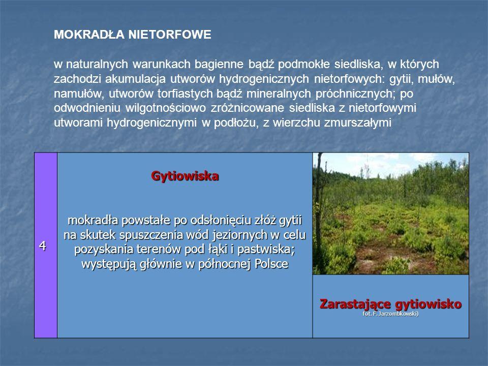 4 Gytiowiska mokradła powstałe po odsłonięciu złóż gytii na skutek spuszczenia wód jeziornych w celu pozyskania terenów pod łąki i pastwiska; występuj