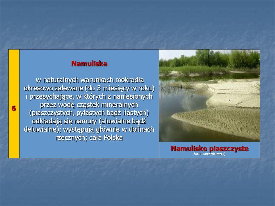 6 Namuliska w naturalnych warunkach mokradła okresowo zalewane (do 3 miesięcy w roku) i przesychające, w których z naniesionych przez wodę cząstek min