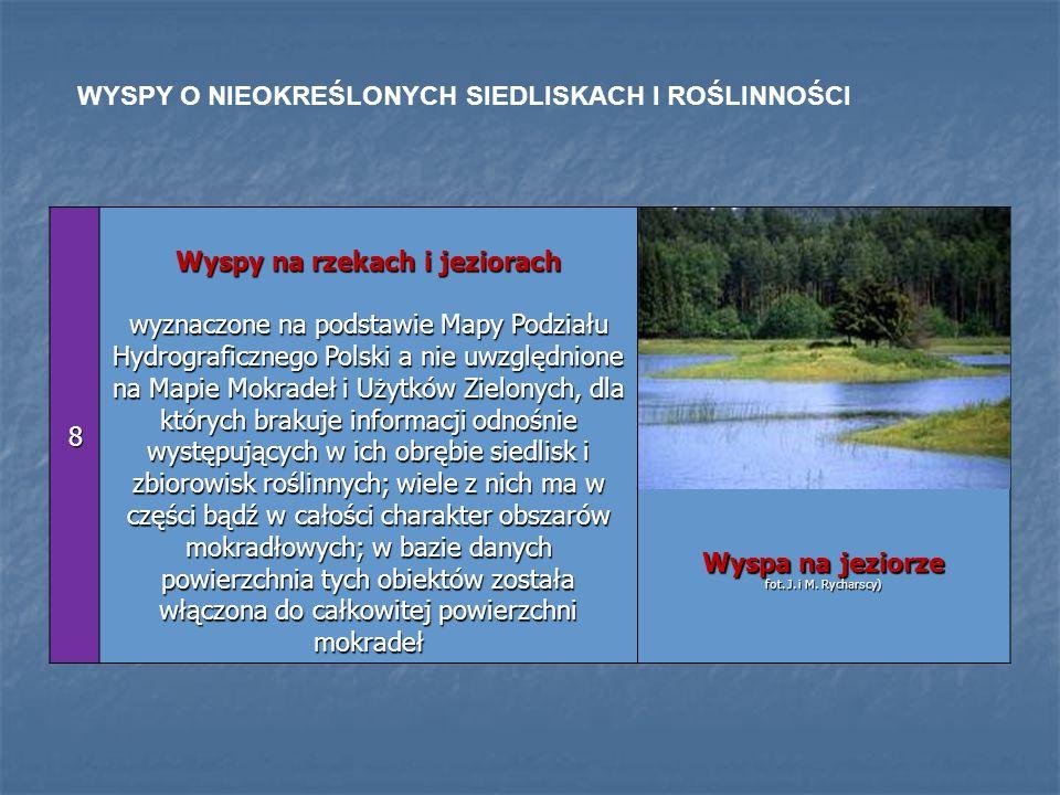 8 Wyspy na rzekach i jeziorach wyznaczone na podstawie Mapy Podziału Hydrograficznego Polski a nie uwzględnione na Mapie Mokradeł i Użytków Zielonych,