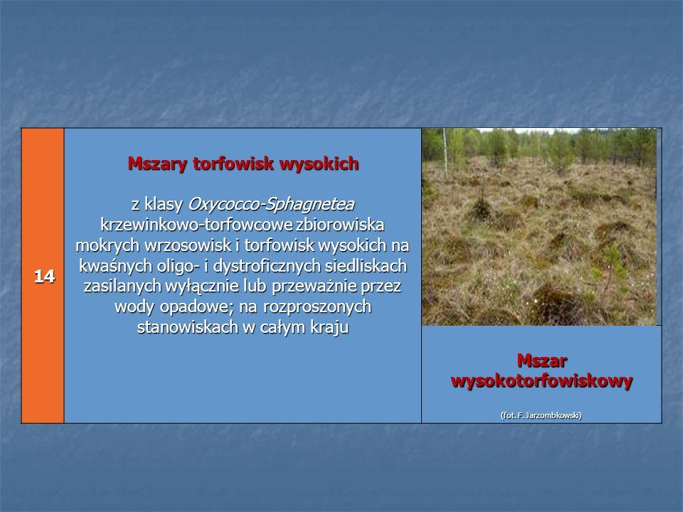 14 14 Mszary torfowisk wysokich z klasy Oxycocco-Sphagnetea krzewinkowo-torfowcowe zbiorowiska mokrych wrzosowisk i torfowisk wysokich na kwaśnych oli
