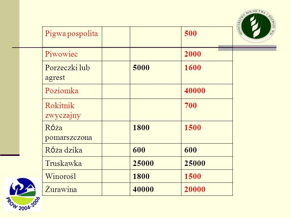 Pigwa pospolita500 Piwowiec2000 Porzeczki lub agrest 50001600 Poziomka40000 Rokitnik zwyczajny 700 R ó ża pomarszczona 18001500 R ó ża dzika 600 Trusk