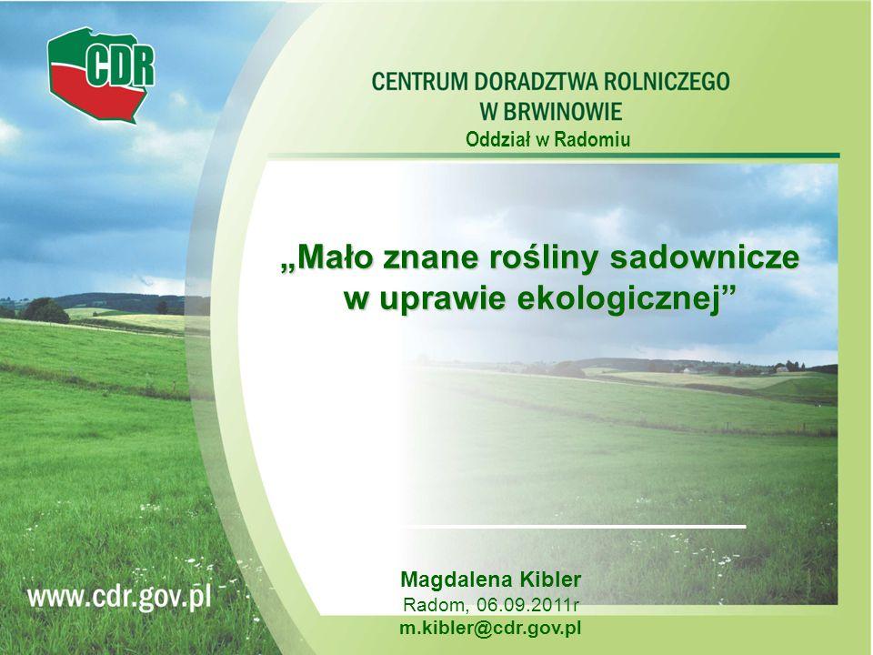 Oddział w Radomiu Magdalena Kibler Radom, 06.09.2011r m.kibler@cdr.gov.pl Mało znane rośliny sadownicze w uprawie ekologicznej