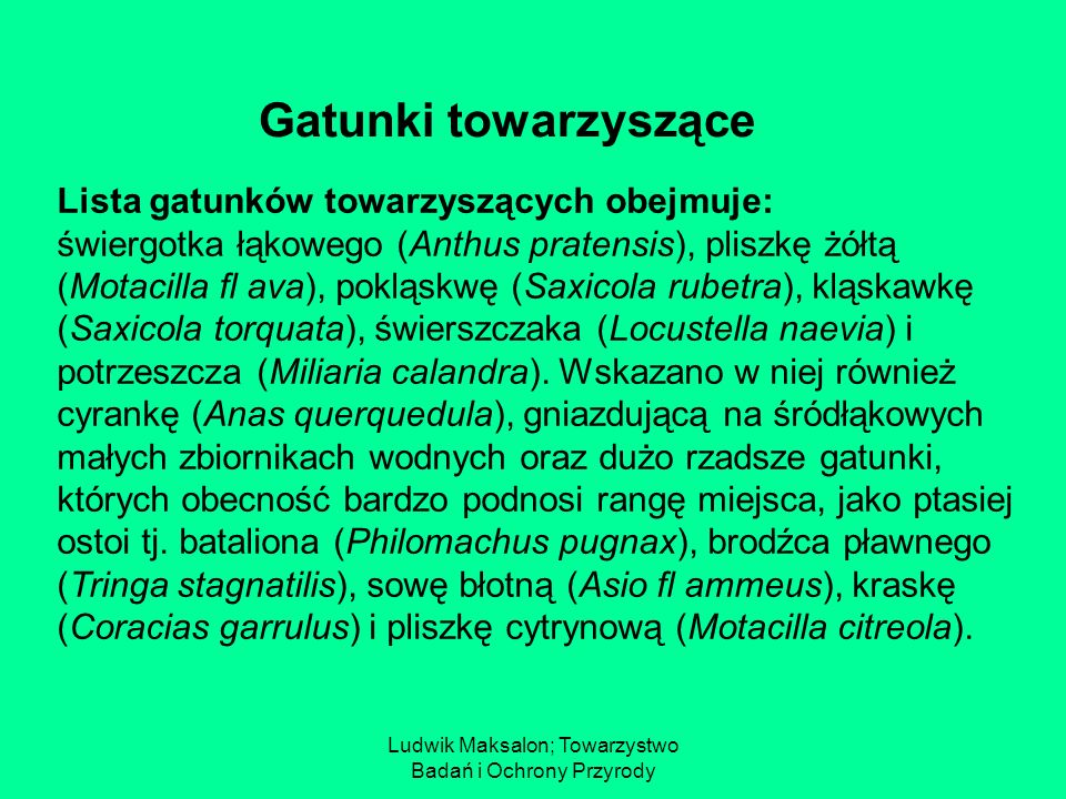 Ludwik Maksalon; Towarzystwo Badań i Ochrony Przyrody Lista gatunków towarzyszących obejmuje: świergotka łąkowego (Anthus pratensis), pliszkę żółtą (M