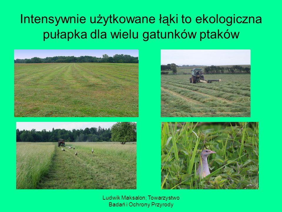 Ludwik Maksalon; Towarzystwo Badań i Ochrony Przyrody Kluczowe i towarzyszące gatunki ptaków Wariant 4(5).1 może być realizowany na łąkach i pastwiskach, na których gniazduje przynajmniej jeden z tzw.