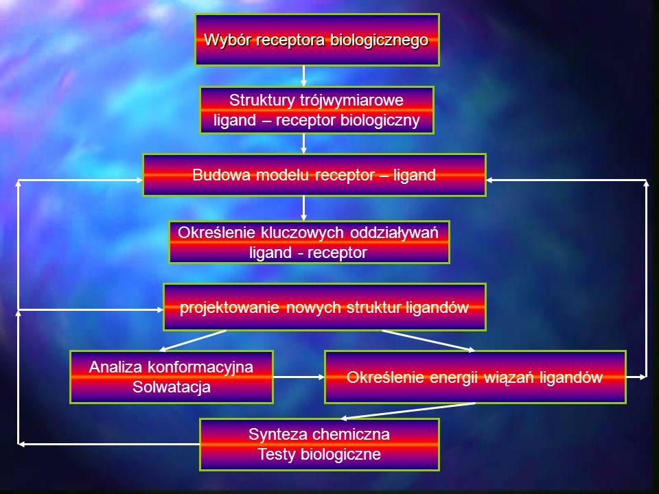 Wybór receptora biologicznego Struktury trójwymiarowe ligand – receptor biologiczny Określenie kluczowych oddziaływań ligand - receptor Budowa modelu