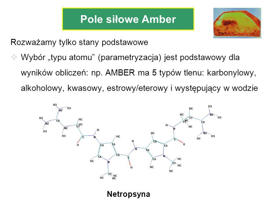 Rozważamy tylko stany podstawowe Wybór typu atomu (parametryzacja) jest podstawowy dla wyników obliczeń: np. AMBER ma 5 typów tlenu: karbonylowy, alko
