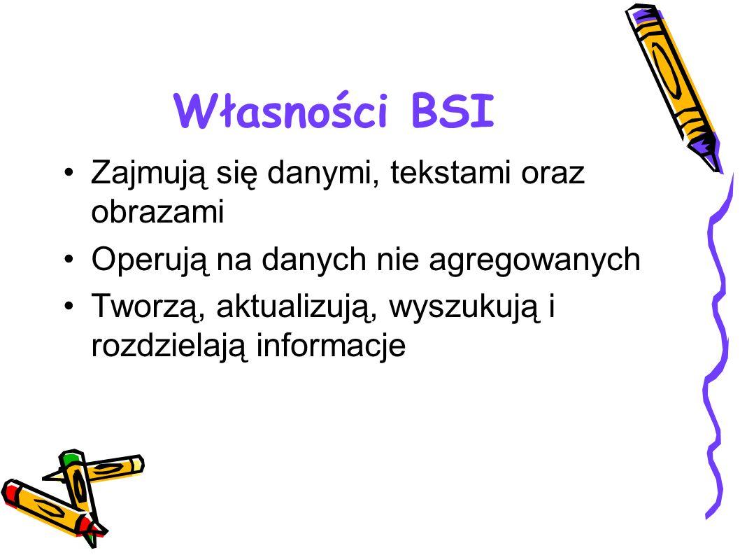 Własności BSI Zajmują się danymi, tekstami oraz obrazami Operują na danych nie agregowanych Tworzą, aktualizują, wyszukują i rozdzielają informacje