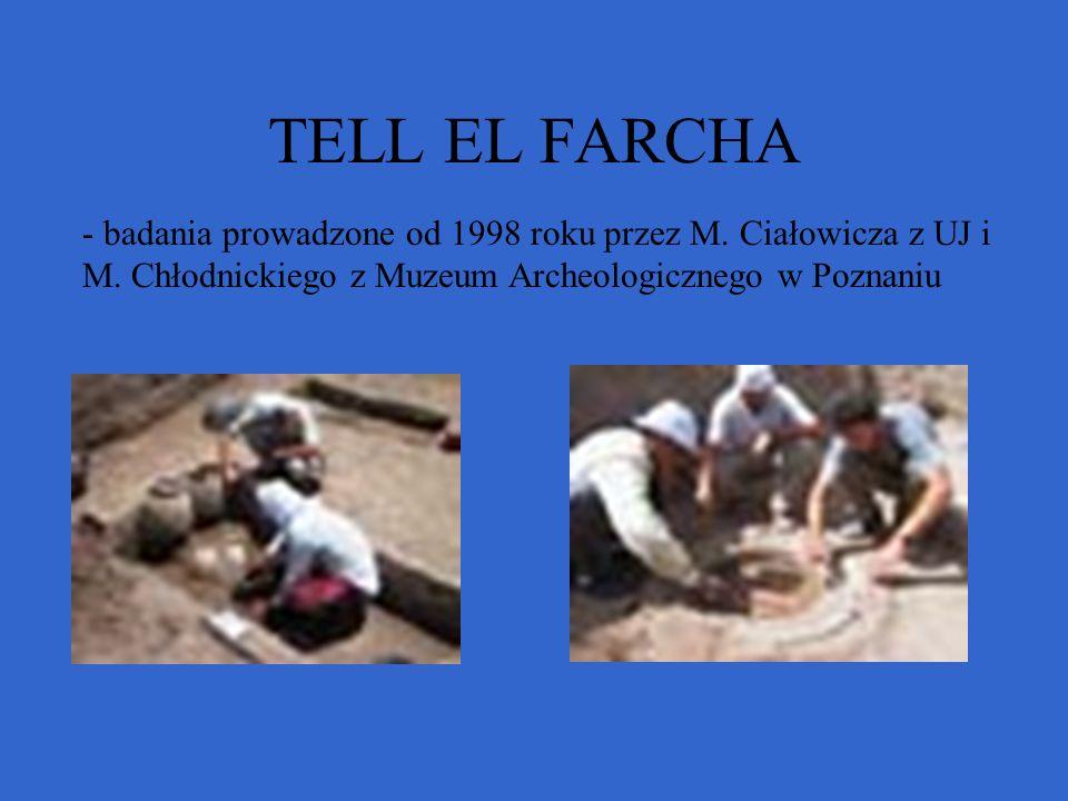 TELL EL FARCHA - badania prowadzone od 1998 roku przez M. Ciałowicza z UJ i M. Chłodnickiego z Muzeum Archeologicznego w Poznaniu