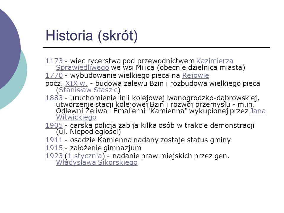 Handel i usługi W Skarżysku-Kamiennej jest kilka dużych sklepów (firm) takich jak: TescoTesco (2 supermarkety, dawny Leader Price i Julius Meinl)Leade