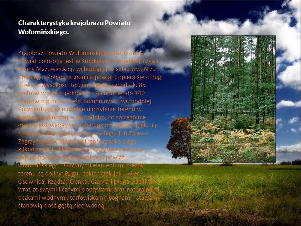 Charakterystyka krajobrazu Powiatu Wołomińskiego. Krajobraz Powiatu Wołomińskiego jest nizinny. Powiat położony jest w środkowo-wschodniej części Nizi