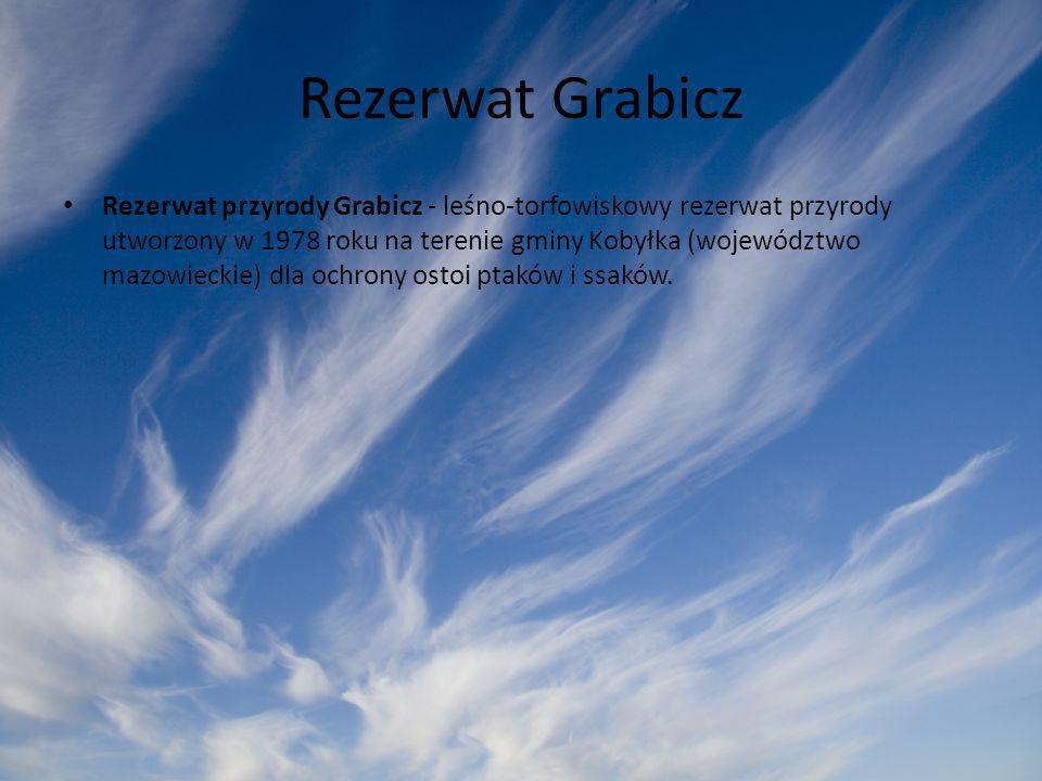 Rezerwat Grabicz Rezerwat przyrody Grabicz - leśno-torfowiskowy rezerwat przyrody utworzony w 1978 roku na terenie gminy Kobyłka (województwo mazowiec