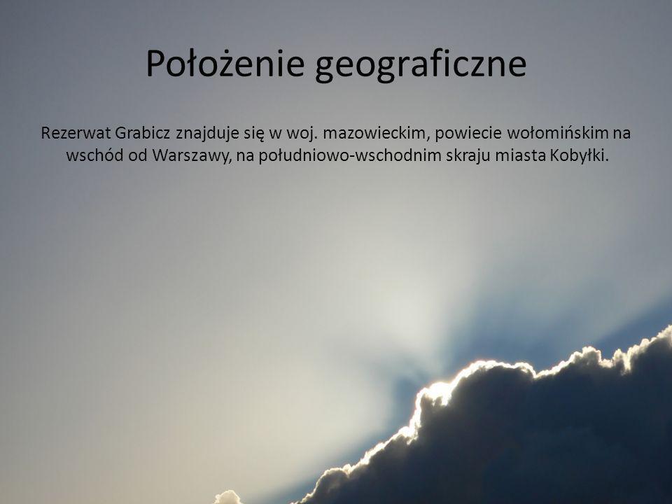 Położenie geograficzne Rezerwat Grabicz znajduje się w woj. mazowieckim, powiecie wołomińskim na wschód od Warszawy, na południowo-wschodnim skraju mi