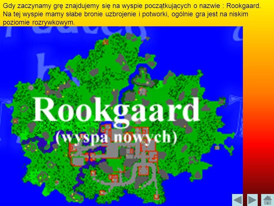 Gdy zaczynamy grę znajdujemy się na wyspie początkujących o nazwie : Rookgaard. Na tej wyspie mamy słabe bronie uzbrojenie i potworki, ogólnie gra jes