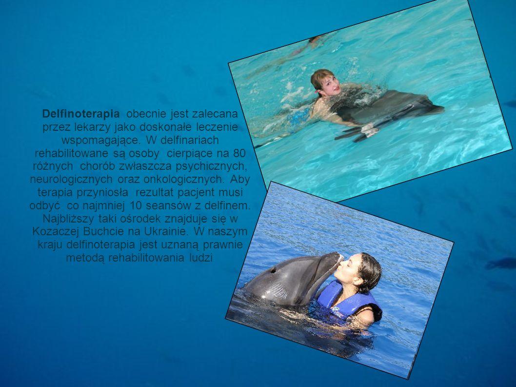 Delfinoterapia obecnie jest zalecana przez lekarzy jako doskonałe leczenie wspomagające. W delfinariach rehabilitowane są osoby cierpiące na 80 różnyc