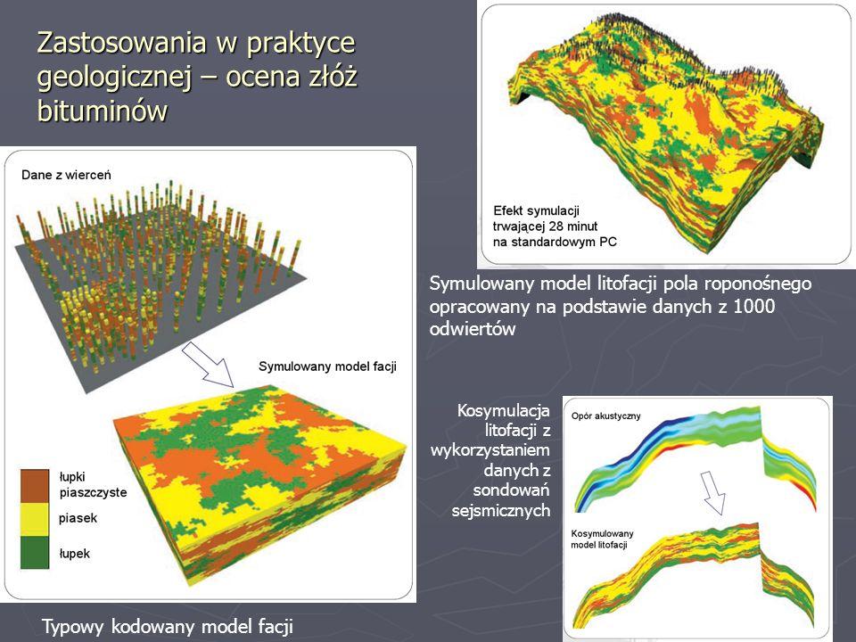 Typowy kodowany model facji Symulowany model litofacji pola roponośnego opracowany na podstawie danych z 1000 odwiertów Kosymulacja litofacji z wykorz