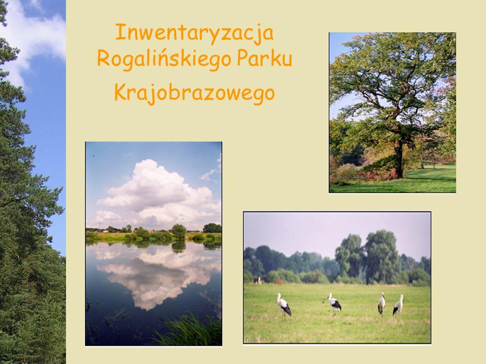 Inwentaryzacja Rogalińskiego Parku Krajobrazowego
