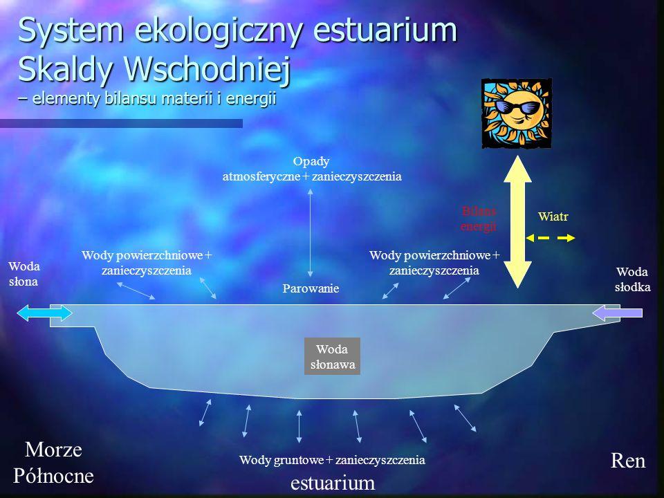 System ekologiczny estuarium Skaldy Wschodniej – elementy bilansu materii i energii estuarium Ren Morze Północne Woda słodka Woda słonawa Woda słona O
