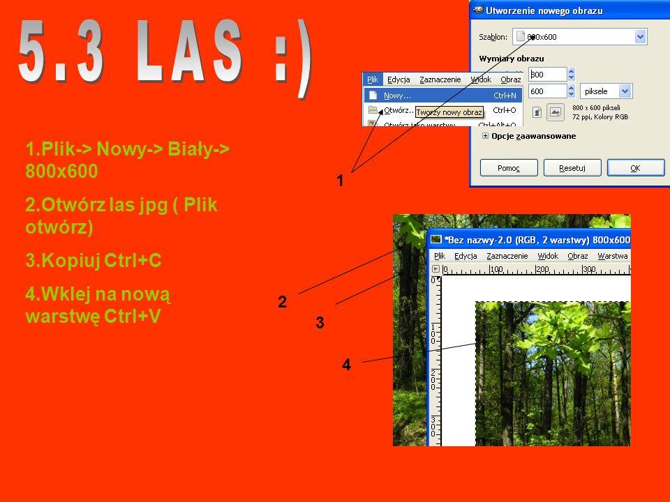 1.Plik-> Nowy-> Biały-> 800x600 2.Otwórz las jpg ( Plik otwórz) 3.Kopiuj Ctrl+C 4.Wklej na nową warstwę Ctrl+V 1 2 3 4