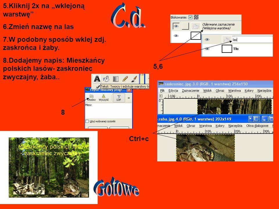 5.Kliknij 2x na wklejoną warstwę 6.Zmień nazwę na las 7.W podobny sposób wklej zdj.