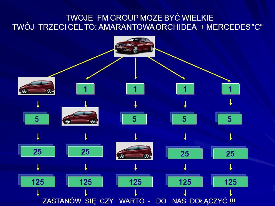 1111 5 25 JA 555 TWOJE FM GROUP MOŻE BYĆ WIELKIE TWÓJ TRZECI CEL TO: AMARANTOWA ORCHIDEA + MERCEDES C 1 5 125 25 ZASTANÓW SIĘ CZY WARTO - DO NAS DOŁĄC