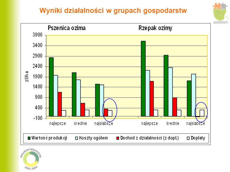 Podsumowanie cd.Ceny towarowej produkcji rolniczej w 2006 r.