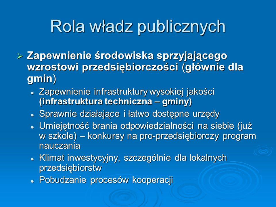Rola władz publicznych Zapewnienie środowiska sprzyjającego wzrostowi przedsiębiorczości (głównie dla gmin) Zapewnienie środowiska sprzyjającego wzros