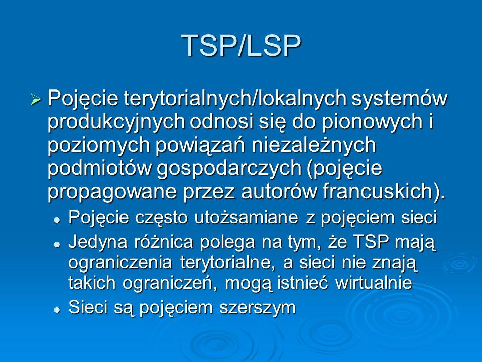 TSP/LSP Pojęcie terytorialnych/lokalnych systemów produkcyjnych odnosi się do pionowych i poziomych powiązań niezależnych podmiotów gospodarczych (pojęcie propagowane przez autorów francuskich).