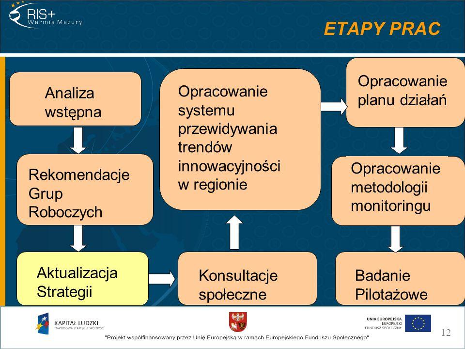 Analiza wstępna Aktualizacja Strategii Rekomendacje Grup Roboczych Konsultacje społeczne Opracowanie planu działań Opracowanie systemu przewidywania trendów innowacyjności w regionie Badanie Pilotażowe Opracowanie metodologii monitoringu ETAPY PRAC 12