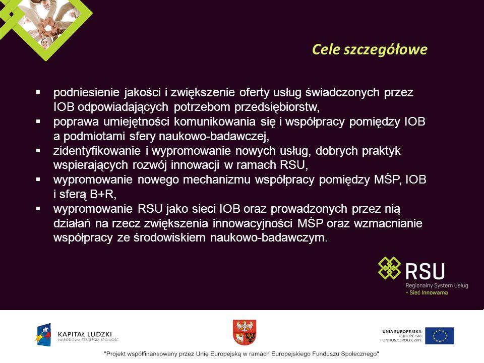 Stworzenie i rozwój struktur zarządzania procesem budowy, rozwoju i monitoringu RSU.