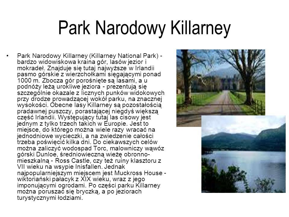 Park Narodowy Killarney Park Narodowy Killarney (Killarney National Park) - bardzo widowiskowa kraina gór, lasów jezior i mokradeł. Znajduje się tutaj