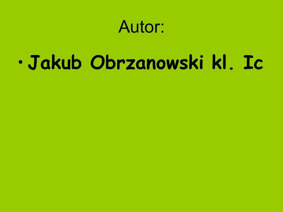 Autor: Jakub Obrzanowski kl. Ic