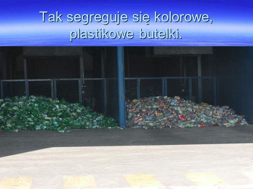 Tak segreguje się kolorowe, plastikowe butelki.