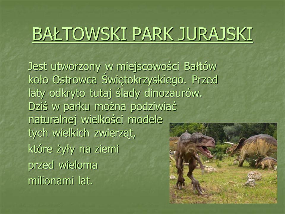 BAŁTOWSKI PARK JURAJSKI Jest utworzony w miejscowości Bałtów koło Ostrowca Świętokrzyskiego. Przed laty odkryto tutaj ślady dinozaurów. Dziś w parku m
