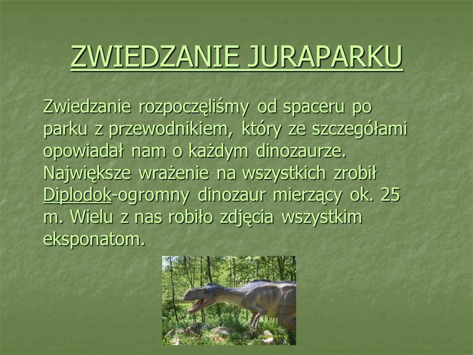 ZWIEDZANIE JURAPARKU Zwiedzanie rozpoczęliśmy od spaceru po parku z przewodnikiem, który ze szczegółami opowiadał nam o każdym dinozaurze. Największe