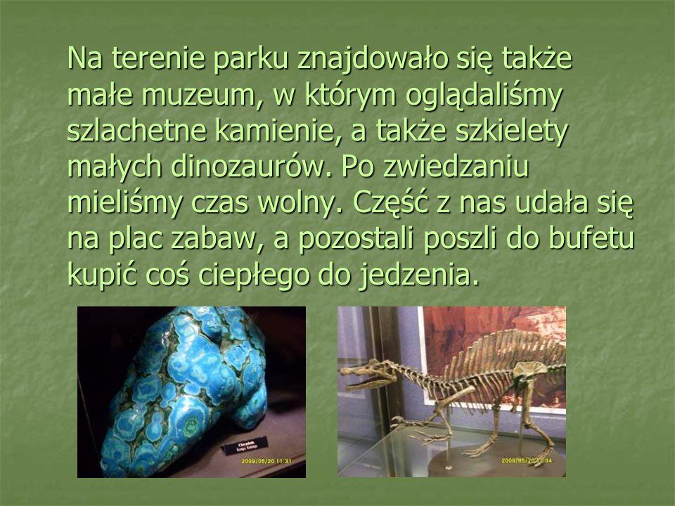 Na terenie parku znajdowało się także małe muzeum, w którym oglądaliśmy szlachetne kamienie, a także szkielety małych dinozaurów. Po zwiedzaniu mieliś