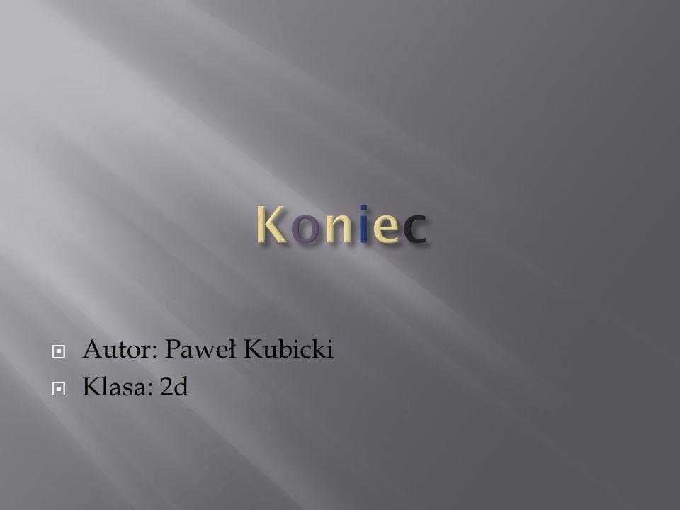 Autor: Paweł Kubicki Klasa: 2d