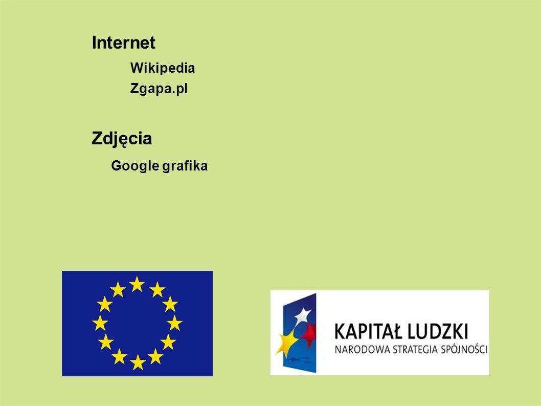 Wikipedia Internet Zgapa.pl Zdjęcia Google grafika