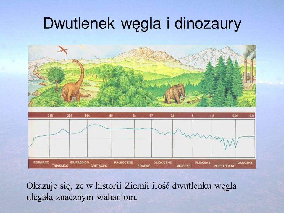 Dwutlenek węgla i dinozaury Okazuje się, że w historii Ziemii ilość dwutlenku węgla ulegała znacznym wahaniom.