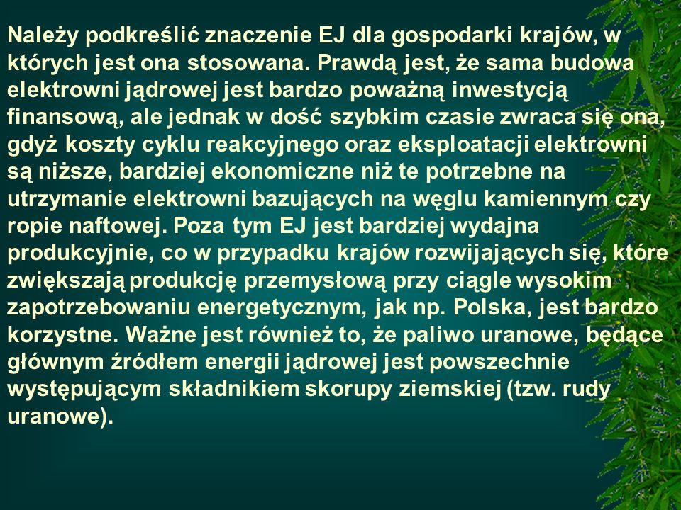 Należy podkreślić znaczenie EJ dla gospodarki krajów, w których jest ona stosowana. Prawdą jest, że sama budowa elektrowni jądrowej jest bardzo poważn