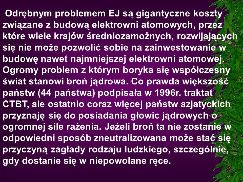 Odrębnym problemem EJ są gigantyczne koszty związane z budową elektrowni atomowych, przez które wiele krajów średniozamożnych, rozwijających się nie m