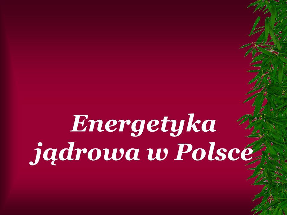 W Polsce działa tylko jeden reaktor jądrowy, lecz służy on tylko do celów badawczych.