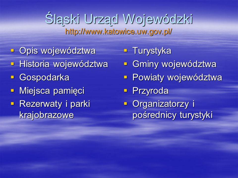 Ministerstwo Gospodarki http://www.mg.gov.pl/Turystyka/ Strategie Strategie Współpraca regionalna Współpraca regionalna Badania rynku turystycznego Badania rynku turystycznego Prawo w turystyce Prawo w turystyce Kształcenie i szkolenie Kształcenie i szkolenie Unia europejska Unia europejska Współpraca międzynarodowa Współpraca międzynarodowa Ewidencje i rejestry Ewidencje i rejestry Strategia rozwoju turystyki na lata 2007- 2013 Strategia rozwoju turystyki na lata 2007- 2013