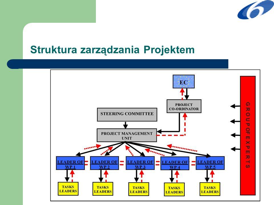 Pakiety działań i wzajemne współzależności w projekcie RISP WP 1 Zarządzanie WP 3 Analiza WP 4 Przygotowanie działań pilotażowych WP 2 Budowanie konsensusu WP 5 Przygotowanie dokumentu RISP