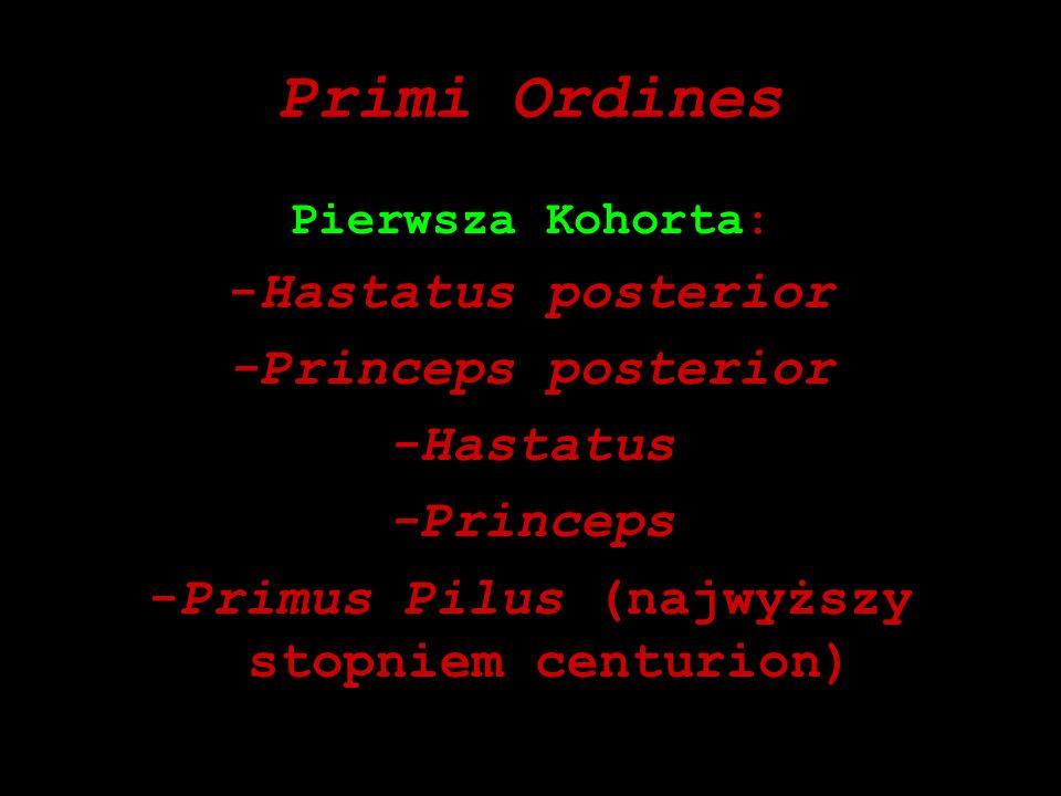 Primi Ordines Pierwsza Kohorta: -Hastatus posterior -Princeps posterior -Hastatus -Princeps -Primus Pilus (najwyższy stopniem centurion)